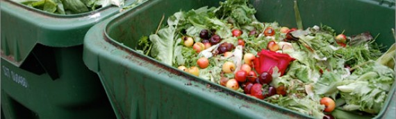 Disposal Ban of Organics in Metro Vancouver