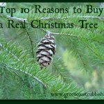 real or artifical christmas trees
