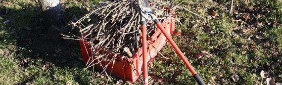 Spring Yard Cleanup Recycling Tips for Home Owners